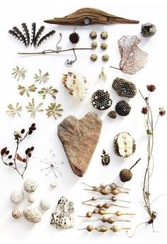 natural collection / Sacred Spaces <3