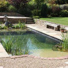 Simple Backyard Pool