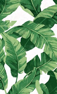 Tropical banana leaves IV Window Curtains