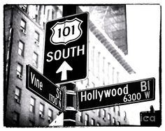 Vine and Hollywood Photograph by John Rizzuto