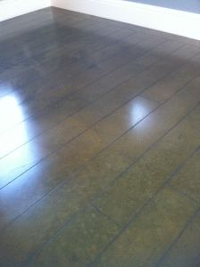 Check out http://stainedconcreteart.com!  Diamond Polished and Stained Concrete Floors