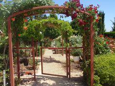 BBY 2012 Susie's Garden - welcome to the vegetable garden