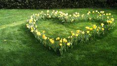 Aménagement floral en forme de coeur