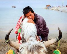 ༄ཿPHAYUL Tibetan Portraits (@tibetanportraits) • Photos et vidéos Instagram