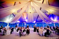 Let our Coronado Island wedding planning team help assist on your big day. Our professionals can walk you through each detail of your Coronado Island wedding. Ballroom Wedding, Tent Wedding, Wedding Receptions, Wedding Blog, Wedding Events, Weddings, Wedding Ideas, Drapery Wedding, Wedding Inspiration