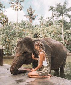 Printing Sculpture Nervous System The World Together Disney Vacations Bali Elephant, Elephant Park, Places To Travel, Travel Destinations, Places To Go, Ubud, Thailand Elephants, Elephant Sanctuary Thailand, Bali Travel