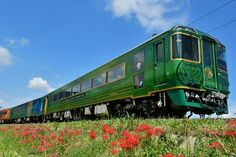 Shikoku Mannaka Sennen Monogatari Scenec train trip Train Travel, Train Trip, Ehime, Tokushima, Colorful Mountains, Train Journey, Pilgrimage, Fields, Scenery