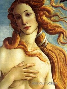 "Renaissance art by Boticelli.  When I was in college, to memorizing this picture is ""Venus on a half shell"""