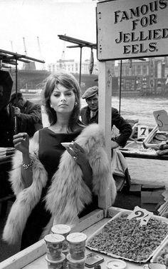 Sophia Loren in The Millionairess 1960