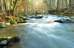 """A stream is a body of water with a current, confined within a bed and stream banks. Depending on its locale or certain characteristics, a stream may be referred to as a branch, brook, beck, burn, creek, """"crick"""", gill (occasionally ghyll), kill, lick, mill race, rill, river, syke, bayou, rivulet, streamage, wash, run or runnel. Banks, Waterfall, Racing, River, Bed, Photography, Outdoor, Running, Outdoors"""