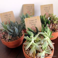 """Super Easy DIY Teacher's Gift: """"Thanks for Helping Me Grow"""" Mini Succulent and Cactus Pots. Just about $8 each!"""