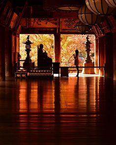 Beautiful temple in Nara . China Travel, Japan Travel, Japan Trip, Japanese Culture, Japanese Art, Japanese Landscape, Monte Fuji, Fukuoka Japan, Kaiser