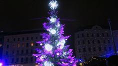 Vánoční sezóna začíná | Christmas season begins | Brno | VLOG | Vegabund Vegan Food, Christmas Tree, Seasons, Holiday Decor, Teal Christmas Tree, Veggie Food, Seasons Of The Year, Vegan Meals, Xmas Trees