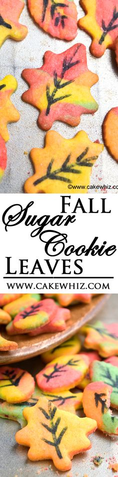 These easy colorful SUGAR COOKIE LEAVES are perfect for Fall/ Autumn and made with just tinted cookie dough and edible markers! From cakewhiz.com