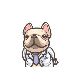 French Bulldog PIGU-Sticker VIII Gifs, Funny Animals, Cute Animals, Funny Bears, Funny Stickers, Line Sticker, Adventure Style, Animated Gif, Cute Art