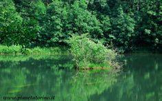 Parco Naturale Orsiera Rocciavré