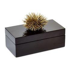 Black Lacquer Box w/ Sea Urchin Medium Boxes (£69) ❤ liked on Polyvore featuring home, home decor, small item storage, decor, decorative accessories, black home decor, black box, sea urchin bowl, onyx bowl and black lacquer box
