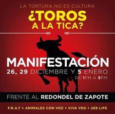 ¿Toros a la tica? http://desktopcostarica.com/eventos/2014/toros-la-tica