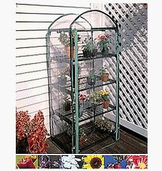 4 Tier Indoor / Outdoor Juliana Plant Growing Rack - A Small Greenhouse to Grow Plants, Flowers, Seedlings by Juliana. $56.39. Vinyl slip-on covering with zippered door. Attractive dark green plastic and steel frame. Adjustable shelving. Your gardening greenhouse! Our greenhouse is  ideal for inside or outside your home.  Their small size allow them to be placed on decks, patios, or indoors next to a window. Each Greenhouse comes with a UV protected, clear, vinyl co...