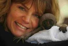 Image result for dorset monkey world Monkey World, Chimpanzee, Orangutans, Primates, Arrow, Monkeys, Lemurs, Centre, Creatures