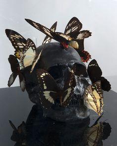 PASQUA PHILIPPE (NE EN 1965) Vanité aux papillons. Crâne, acrylique noire et papillons reposant sur une base en plexiglas. Massol
