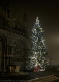 venezia blog: Seasonal San Marco: Tree Is Up, Crowds Are Down (T...
