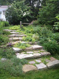 Garden Stairs, Garden Arbor, Garden Paths, Hillside Landscaping, Landscaping With Rocks, Landscaping Ideas, Outdoor Landscaping, Stone Stairs, Garden Stepping Stones