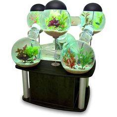 Wow!!! Fish tank!!!