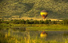 Balloon safari Safari, Balloons, Vehicles, Globes, Balloon, Car, Vehicle, Tools