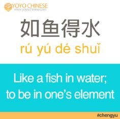 """Your Chinese friend's jaw will hit the floor if you use today's four-character phrase, or 成语 (chéng yǔ). 如鱼得水 (rú yú dé shuǐ) means """"like a fish in water"""" or """"to be in one's element"""". It is an adjective used to describe when someone feels right at home with a certain person or situation.  Example sentence:  他在新公司如鱼得水,升职很快。 (tā zài xīn gōng sī rú yú dé shuǐ, shēng zhí hěn kuài) He is in his element at the new company, and was promoted very quickly."""
