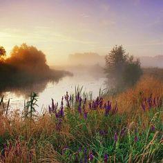 Foggy morning on the river, автор — Viktor Tulbanov. Nature Landscape, Watercolor Landscape, Landscape Photos, Landscape Paintings, Landscape Photography, Nature Photography, Foggy Morning, Guache, Nature Aesthetic