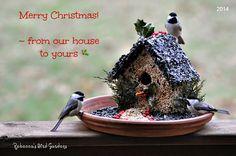 Rebecca's Bird Gardens Blog: DIY Gingerbread Birdhouse