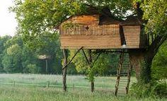 """Résultat de recherche d'images pour """"cabanes dans les arbres"""""""
