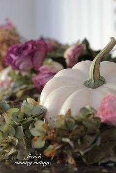 White pumpkins and dried hydrangeas.....love it!