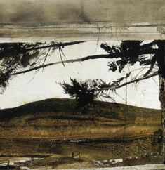 "andrew wyeth -""the black"" - Google Search"