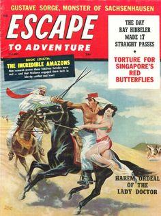 e413e7a6f63f37819ce604971d5d9ed2--french-foreign-legion-book-covers.jpg (671×900)
