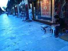 In Turkey, Seeing Cats | The Gallivanting Explorer