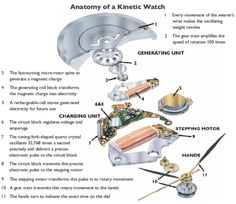 Anatomy of a kinetic watch Exploded View, Anatomy, Watches, Technical Drawings, Carving Designs, Wood Carving, Vintage Jewelry, Woodworking, Hands