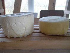 quelques recettes de fabrication de fromages, telles que je les pratique, à partir de lait de vache ou de chèvre, à pâte cuite ou crue.