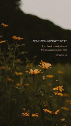 K Quotes, One Word Quotes, Lyric Quotes, Korean Drama Funny, Korean Drama Quotes, Song Lyrics Wallpaper, Wallpaper Quotes, Vixx, Korean Song Lyrics