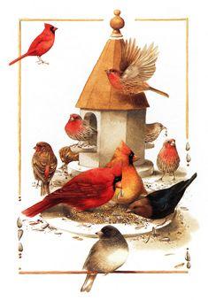 Birds by Marlolein Bastin, mb_nature sketches_birds.jpg (1111×1600)