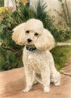 Poodle In Garden Painting - Poodle In Garden Fine Art Print