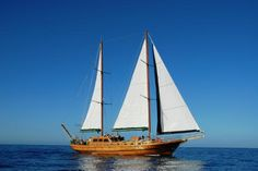 Canary Boat Trips (Puerto Rico) - 2020 All You Need to Know Before You Go (with Photos) - Puerto Rico, Spain Puerto Rico Gran Canaria, Going On Holiday, Holiday Ideas, Places Ive Been, Places To Go, Sailing Ships, Sailing Boat, Canario, Canary Islands