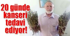 Kanser Hastalığına Şifa Olan Ot (Yapışkan Andız Otu) - Hasan Alemdar ve Lütfü Acet - Haber Video Sitesi - Habertube.org