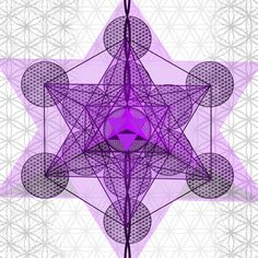 platonic solids flower of life
