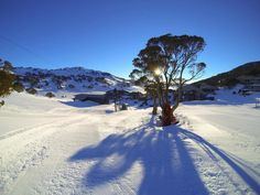 Charlotte Pass Ski Resort - Australia's highest alpine resort in the Snow Mountains of New South Wales, Australia