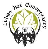 Lubee Bat Conservancy- #SchoolFieldTrip in #GainesvilleFL