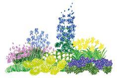 Summer Garden, Garden Inspiration, Garden Plants, Diagram, World, Clueless, Art, Gardening, Ideas