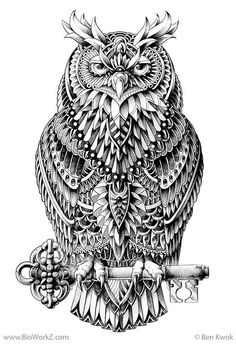 Owl - Intricately Tangled. Owl tattoo idea?