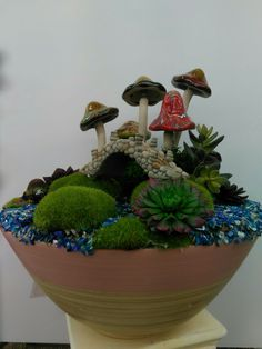 Mushroom fairy garden by Keith in our Wilmington, NC store - Visit your local A. Moore store to find more designer floral inspiration - fairy garden inspo - mini gardens Mini Gardens, Fairy Gardens, Woodland Fairy, Wilmington Nc, Free Range, Creative Play, Plant Design, Fairy Houses, Succulents Garden